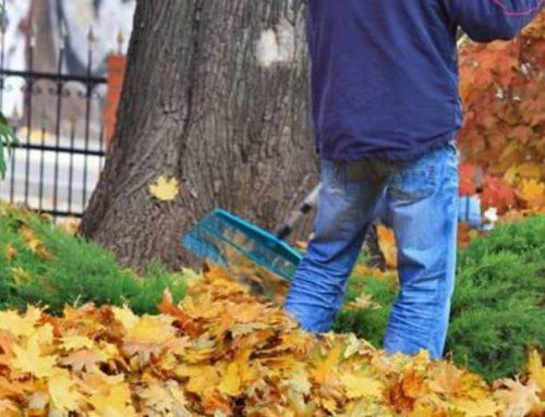 Garaje, jardín, piscinas… ¡Limpiamos toda la comunidad!