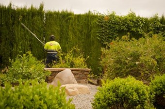 empresa jardineria en valencia